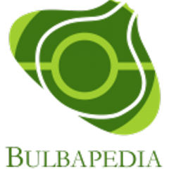Bulbapedia (APK) – A New Journey For Pokemon Lovers